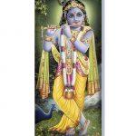 Amohadilla para ojos Krishna