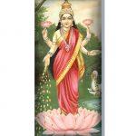 Amohadilla para ojos Lakshmi Parada